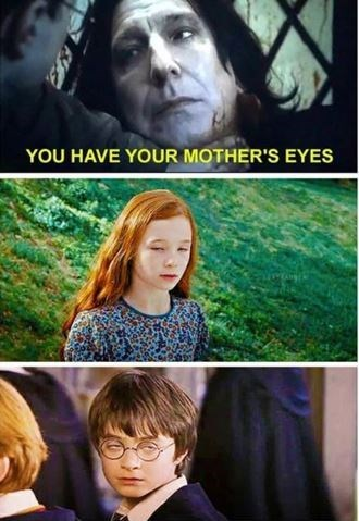 Harry Potter meme about both Harry and his mother having derpy faces