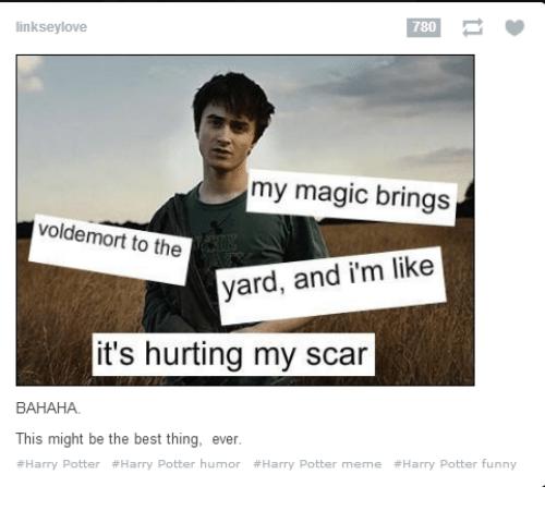 Harry Potter meme with the lyrics to Kelis' Milkshake