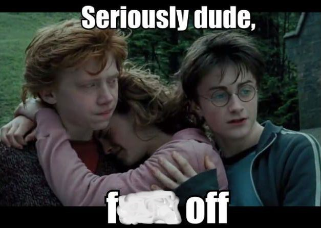 """Pic of Hermione hugging Ron and Harry awkwardly standing next to them with text that reads, """"Seriously dude, f*ck off"""""""