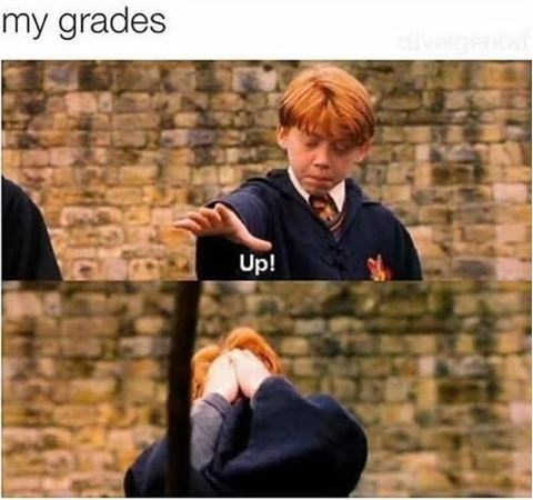 Harry Potter meme about failing to raise your grades with scene of Ron getting a broom to the face
