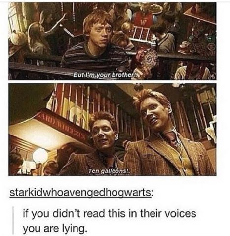 Harry Potter scene with the Weasley twins picking on Ron