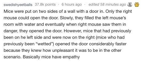 """Text - edited 58 minutes ago3 swedishyeetballs 37.8k points 6 hours ago Mice were put on two sides of a wall with a door in. Only the right mouse could open the door. Slowly, they filled the left mouse's room with water and eventually when right mouse saw them in danger, they opened the door. However, mice that had previously been on he left side and were now on the right (mice who had previously been """"wetted"""") opened the door considerably faster because they knew how unpleasant it was to be in"""