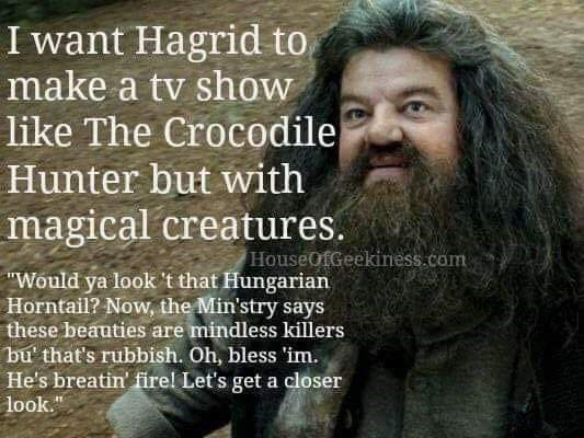 meme about Hagrid having his own TV show