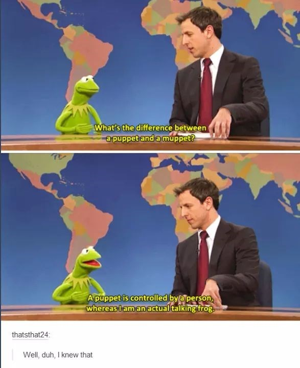 meme of Kermit the Frog explaining the difference between a Muppet and a puppet
