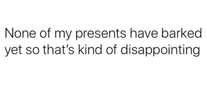 meme about wanting to get a puppy for Christmas