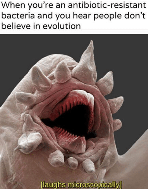 science meme about evolution with pic of microscopic bacteria laughing