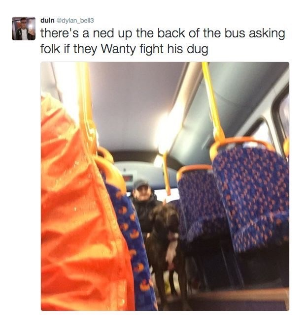 Product - duln @dylan_bell3 there's a ned up the back of the bus asking folk if they Wanty fight his dug