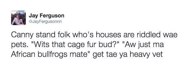 """Text - Jay Ferguson @JayFergusonnn Canny stand folk who's houses are riddled wae pets. """"Wits that cage fur bud?"""" """"Aw just ma African bullfrogs mate"""" get tae ya heavy vet"""
