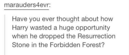 "Tumblr post that reads, ""Have you ever thought about how Harry wasted a huge opportunity when he dropped the Resurrection Stone in the Forbidden Forest?"""