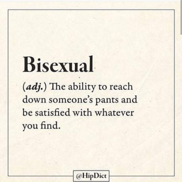 literal joke - Text - Bisexual (adj.) The ability to reach down someone's pants and be satisfied with whatever you find @HipDict