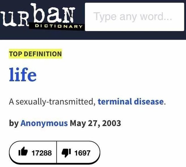 literal joke - Text - URbaN Type any word... DICTIONARY TOP DEFINITION life A sexually-transmitted, terminal disease. by Anonymous May 27, 2003 17288 1697