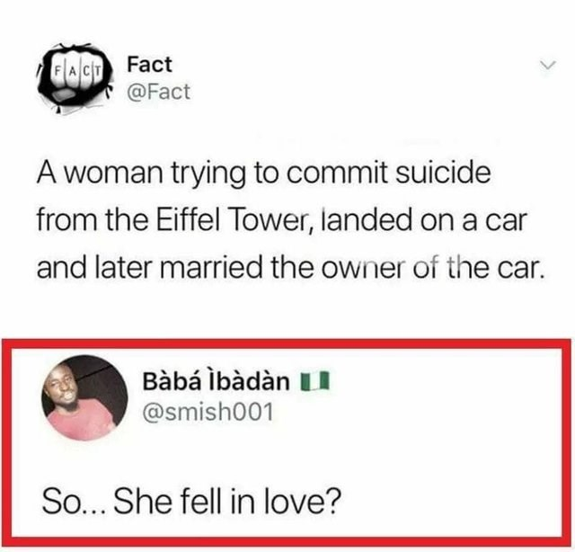literal joke - Text - FACT Fact @Fact A woman trying to commit suicide from the Eiffel Tower, landed on a car and later married the owner of the car. Bàbá lbàdàn LI @smish001 So... She fell in love?