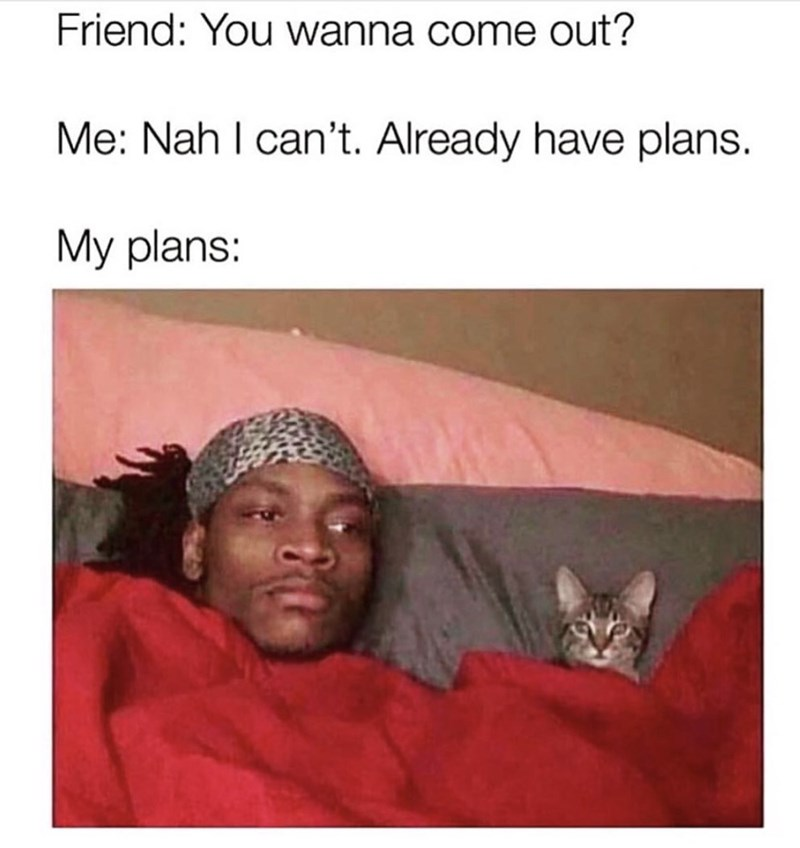 meme about having plans with your cat with pic of man and cat laying in bed