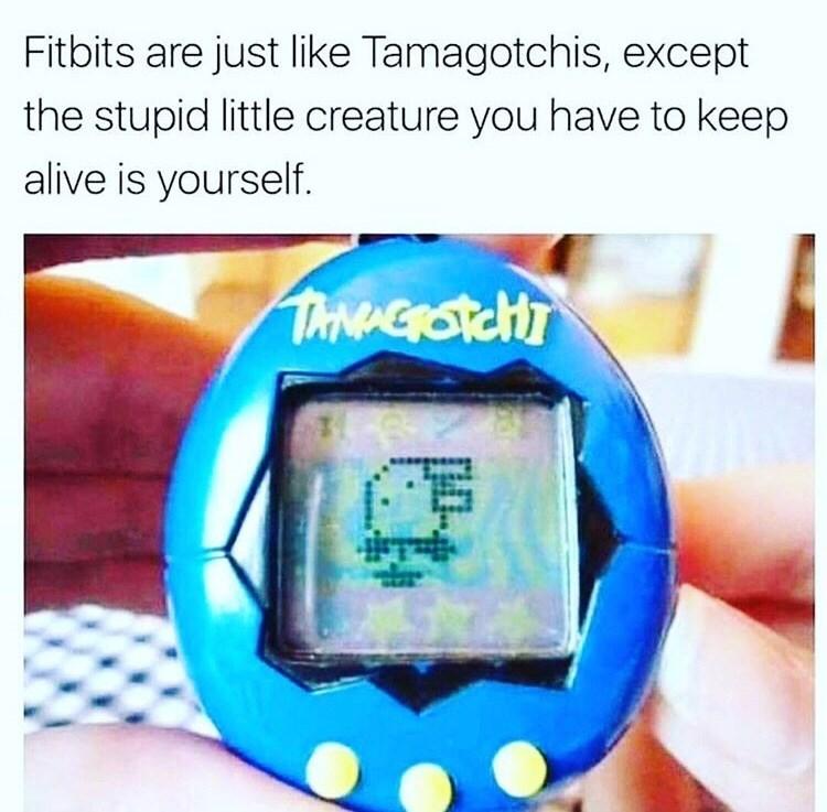meme explaining how fitbits are like tamagotchis