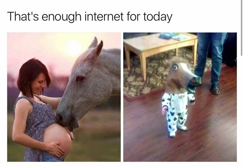 pic of horse licking a pregnant woman's belly next to pic of baby wearing a horse's head mask