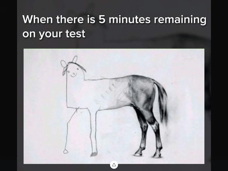 """Caption that reads, """"When there is five minutes remaining on your test"""" above a drawing of a horse that has a rushed, terrible-looking front end"""