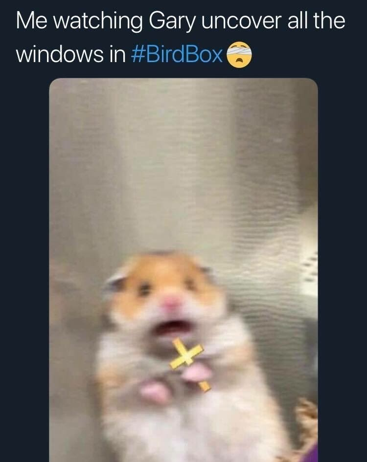 bird box meme with pic of scared hamster holding a cross