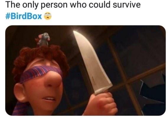 bird box meme about Linguini from Ratatouille surviving the movie