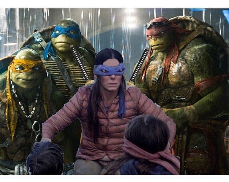bird box meme about Sandra Bullock's character being one of the ninja turtles