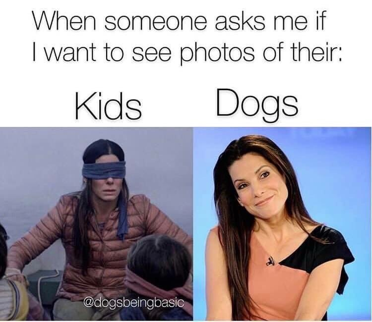 bird box meme about wanting to see pics of other people's dogs but not their kids