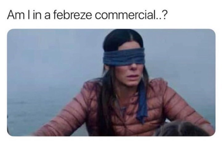 bird box meme about Sandra Bullock's character wondering if she's in a fabric scent commercial