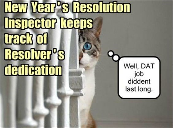 Cat - New Year's Resolution Inspector keens track of Resolver's dedication Well, DAT job diddent last long.