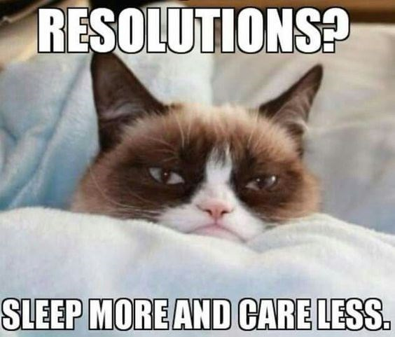 Cat - RESOLUTIONS? SLEEP MOREAND CARE LESS
