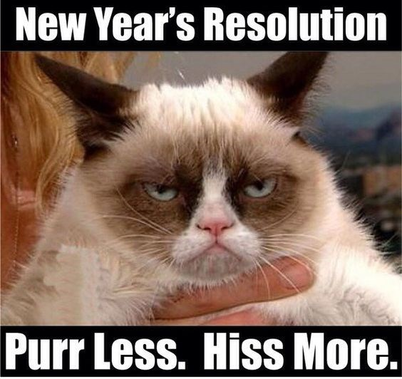 Cat - New Year's Resolution Purr Less. Hiss More.