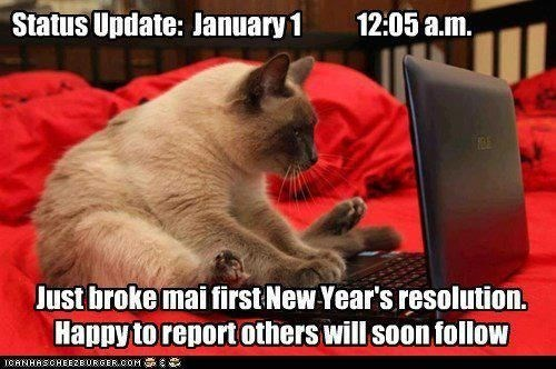Cat - Status Update: January 1 12:05 a.m. Just broke maifirst New Year's resolution. Happyto report others will soon follow CANHASCHEE2EURGER cOM
