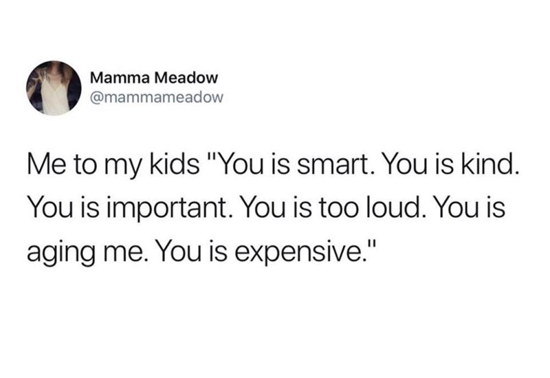 "Text - Mamma Meadow @mammameadow Me to my kids ""You is smart. You is kind. You is important. You is too loud. You is aging me. You is expensive."""