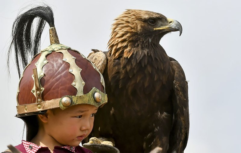 An eagle sitting on the shoulder of a Kyrgyz boy in traditional clothes