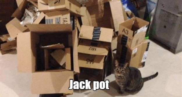 Cardboard - A3 182 Jack pot 1A