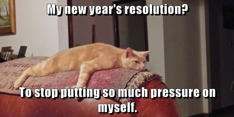 Cat - My new year's resolution? Tostop putting So much pressure on myself.