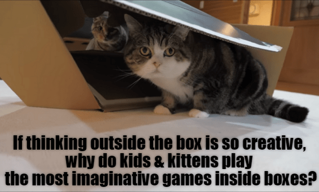 Cat - If thinking outside the box is so creative, why do kids & kittens play the most imaginative games inside boxes?