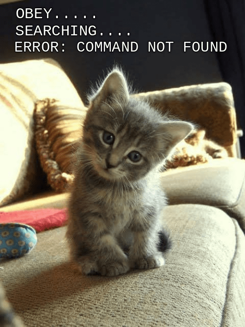 Cat - OBEY... SEARCHING. . ERROR COMMAND NOT FOUND