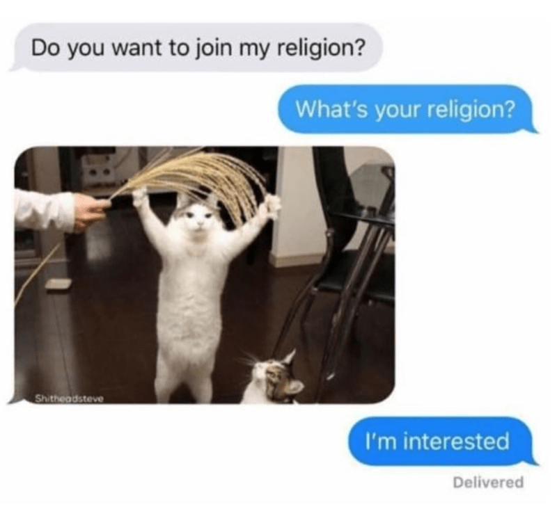 Caturday meme about recruiting for a cat based religion