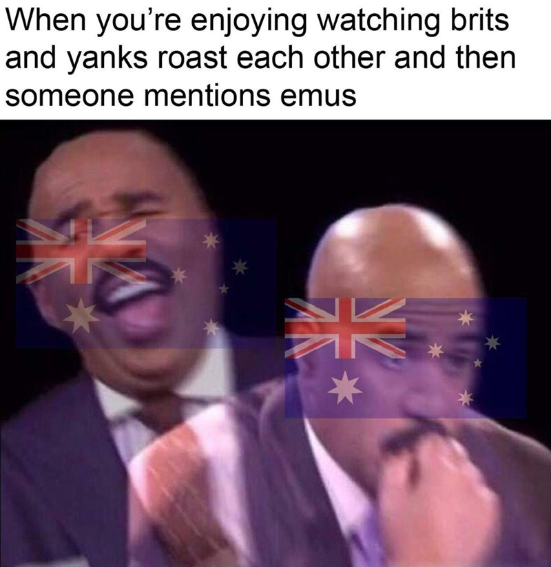 history meme - Face - When you're enjoying watching brits and yanks roast each other and then someone mentions emus