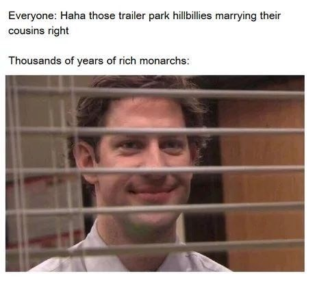 """Caption that reads, """"Everyone: haha those trailer park hillbillies marrying their cousins right; Thousands of years of rich monarchs: ..."""" above a pic of Jim Halpert from The Office smirking behind some blinds"""