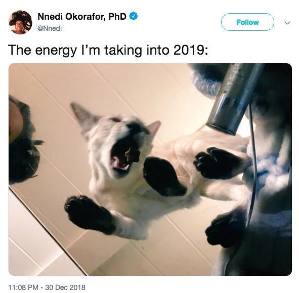 Cat - Nnedi Okorafor, PhD Follow @Nnedi The energy I'm taking into 2019: 11:08 PM 30 Dec 2018