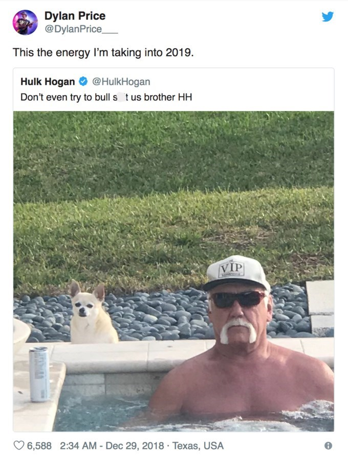 Adaptation - Dylan Price @DylanPrice This the energy I'm taking into 2019 Hulk Hogan @HulkHogan Don't even try to bull s t us brother HH VIP 6,588 2:34 AM - Dec 29, 2018 Texas, USA