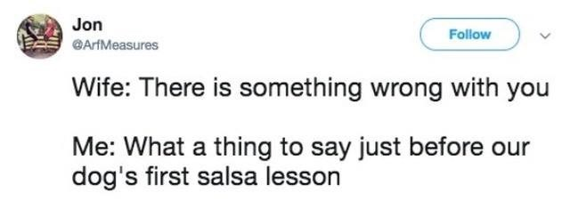 Text - Jon Follow ArfMeasures Wife: There is something wrong with you Me: What a thing to say just before our dog's first salsa lesson