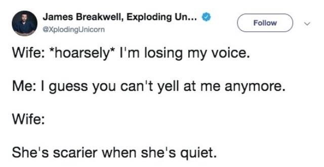 "Text - James Breakwell, Exploding Un... Follow explodingUnicorn Wife: ""hoarsely* I'm losing my voice. Me: I guess you can't yell at me anymore. Wife: She's scarier when she's quiet."