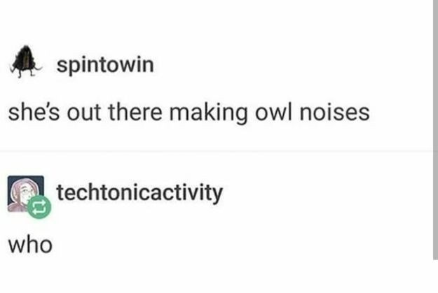 """Tumblr post that reads, """"She's out there making owl noises;"""" someone replies with, """"Who"""""""