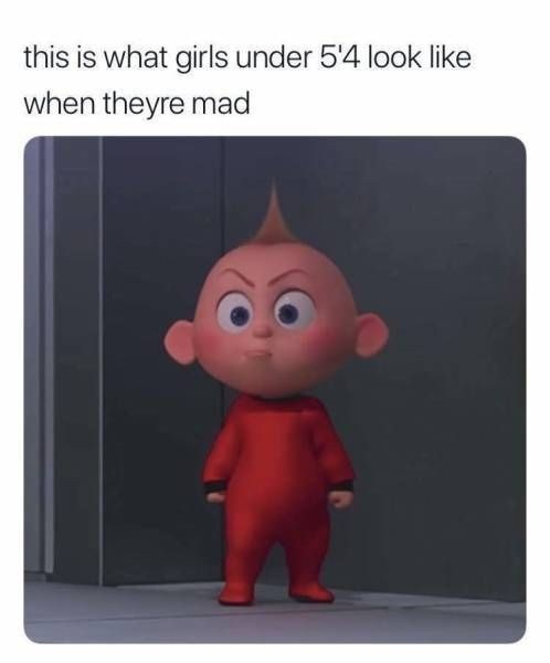 memes - Cartoon - this is what girls under 5'4 look like when theyre mad