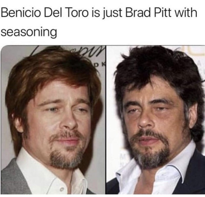 "Caption that reads, ""Benicio del Toro is just Brad Pitt with seasoning""above pics of both of them looking very similar"
