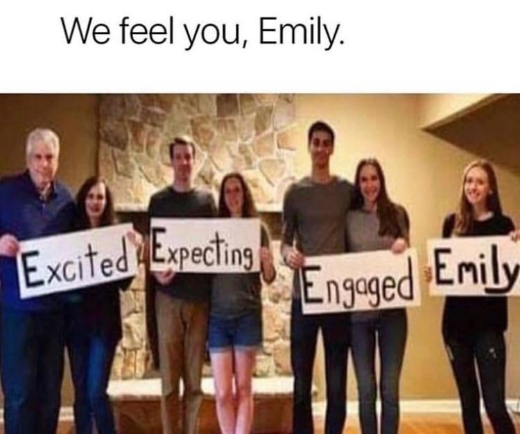 "Caption that reads, ""We feel you Emily"" above a pic of family member couples who are ""Excited, expecting, engaged,"" and ""Emily"""