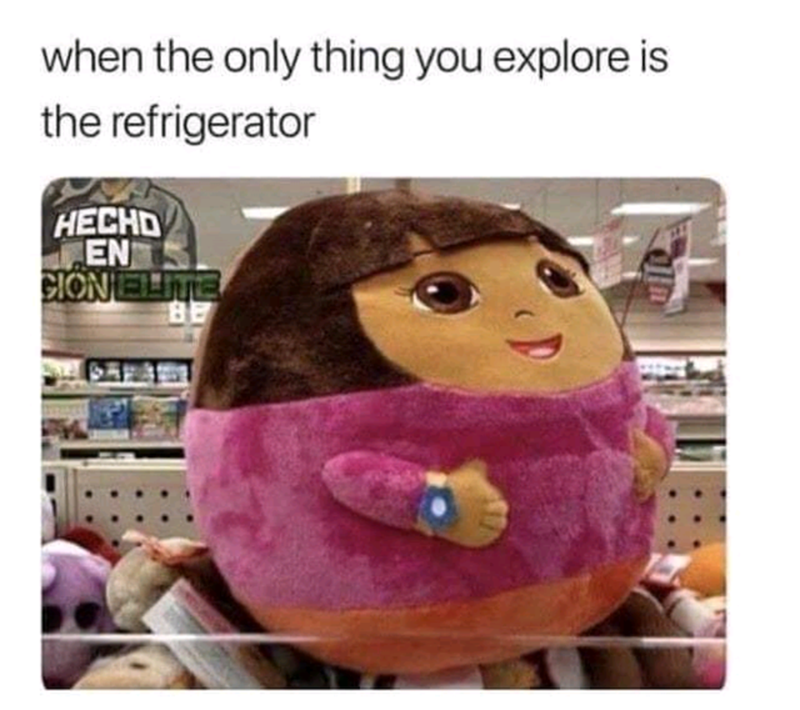 "Caption that reads, ""When the only thing you explore is the refrigerator"" above a pic of a very fat Dora the Explorer pillow"