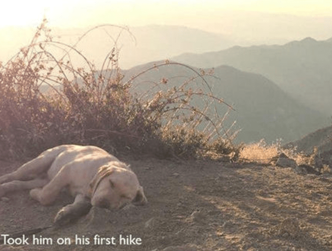 Atmospheric phenomenon - Took him on his first hike