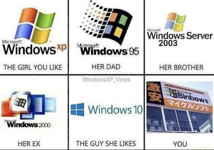 Product - Microsoft Windows Server 2003 Microsoft Microsoft WindowsXPWindows 95 HER DAD THE GIRL YOU LIKE HER BROTHER WindowsXP Vines Binbows マイケルソフト Windows 10 Windows zo00 THE GUY SHE LIKES HER EX YOU