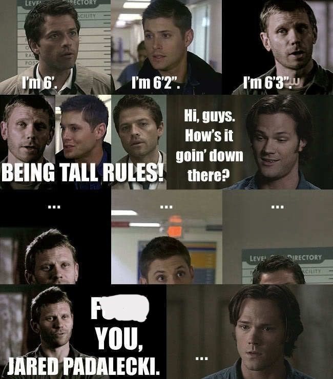 "supernatural meme - Facial expression - LEVE RECTORY CILITY RA POS I'm6. I'm 6'3 I'm 62"" Hi, guys. How's it goin' down BEING TALL RULES! there? LEVE RECTORY CRITY YOU, JARED PADALECKI."